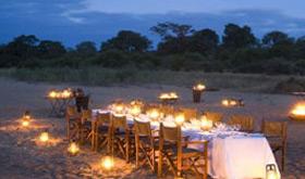 Ngala Safari Lodge