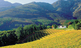 South Africa Incentive Tours