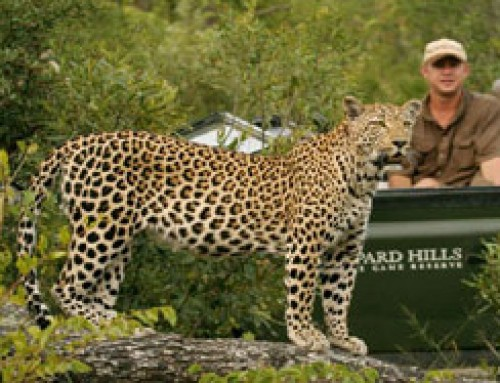 Northern Kruger Park