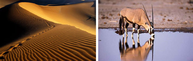Highlight-tours-of-Namibia-2