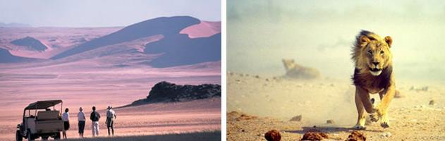 Highlight-tours-of-Namibia-3