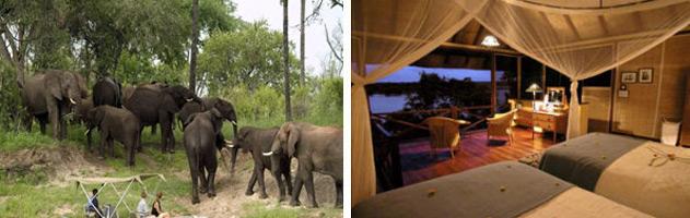 Zambezi-River-Club-2