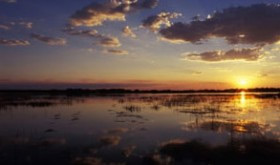 botswana-accommodation