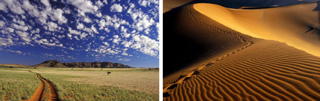 cape-diversity-tours-namibia