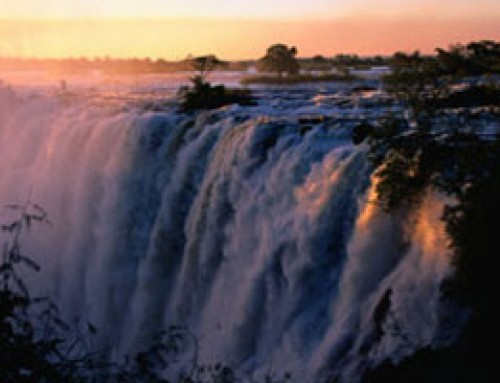 Victoria Falls and Chobe Guided Tours