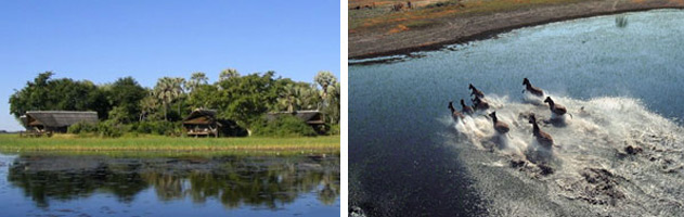 Khwai-River-Lodge-okavango-delta-botswana